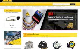 www.bragapecas.com.br